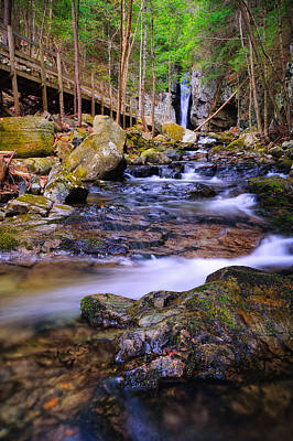 Photograph - Below The Falls Shannon Brook Below The Falls Of Song by Jeff Sinon