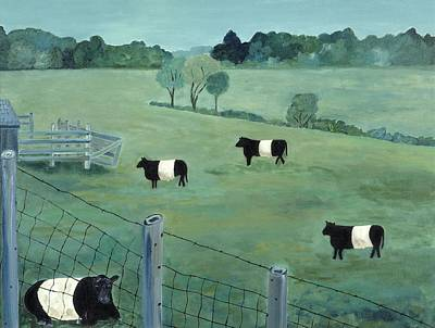 Belted Galloways Art Print by Fay Sciarra