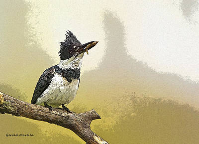 Kingfisher Digital Art - Belted Kingfisher by Gerald Marella