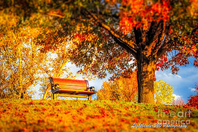 Photograph - Bench Break by Larry McMahon