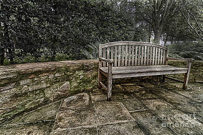 Photograph - Bench In The Garden by Danny Hooks