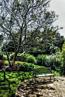 Photograph - Bench In The Garden by Danuta Bennett