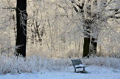 Bench In The Park Art Print by Gynt