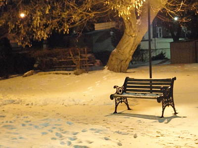 Bench In The Winter Park Art Print by Guy Ricketts