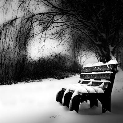Photograph - Bench On The Riverside by Michael Arend