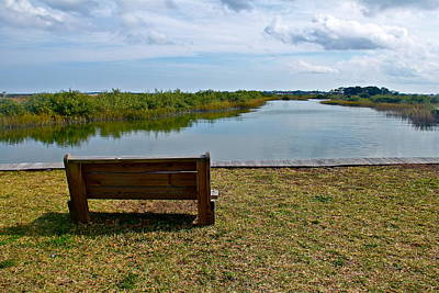 Photograph - Bench Overlooking A Marsh by Denise Mazzocco