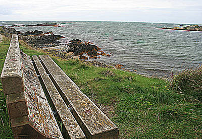 Photograph - Bench Overlooking The Sea In North Wales by Georgia Fowler