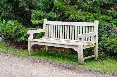Outdoor Still Life Photograph - Bench by Tom Gowanlock