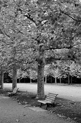 Photograph - Benches In The Park by Corinne Rhode