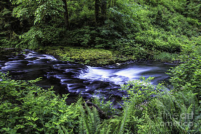 Photograph - Bend In The River by Stuart Gordon