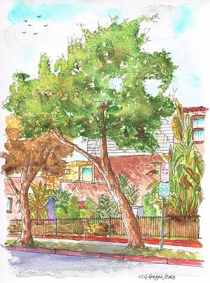 Bended Tree In Horn Drive - Hollywood Hills - Los Angeles - California Art Print