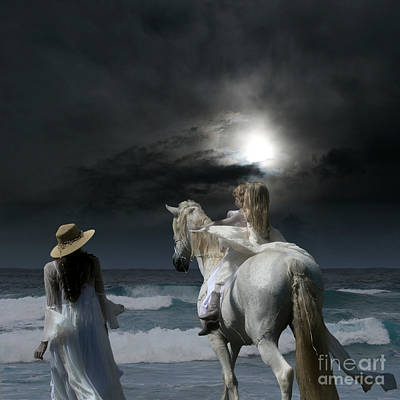 Black And White Horse Photography - Beneath the illusion in Colour by Sharon Mau