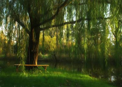 Willow Lake Photograph - Beneath The Willow by Lori Deiter