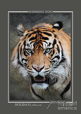 Photograph - Bengal Tiger Christmas Cards by Jai Johnson