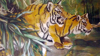 Bengal Tigers By The Waterside Art Print