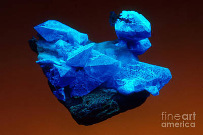 Photograph - Benitoite by Mark A Schneider