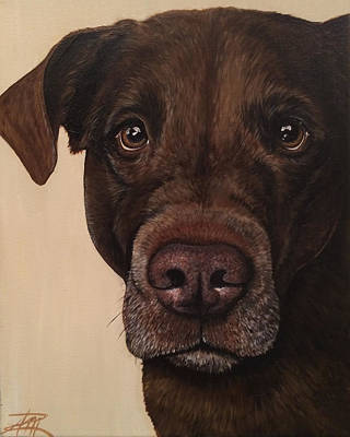 Mixed Labrador Retriever Painting - Benji by Ana Marusich-Zanor