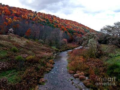 Photograph - Bennet's Creek by Christian Mattison