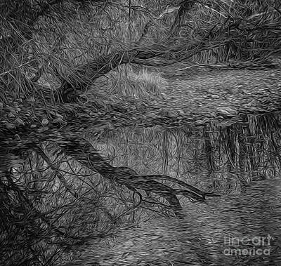 Just Desserts - Bent Tree Reflection in Paint BW by Mitch Johanson