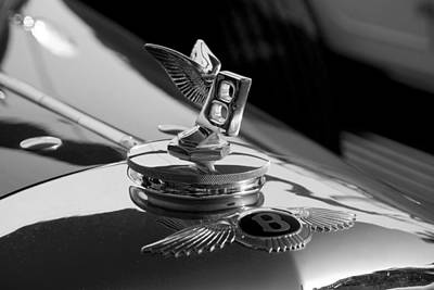 Photograph - Bentley by Beverly Stapleton