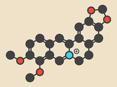 Berberine Alkaloid Molecule Art Print by Molekuul
