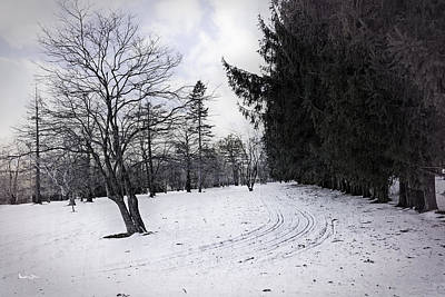 Berkshires Winter 9 - Massachusetts Art Print by Madeline Ellis