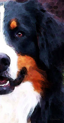 Sharon Digital Art - Bernese Mountain Dog - Half Face by Sharon Cummings