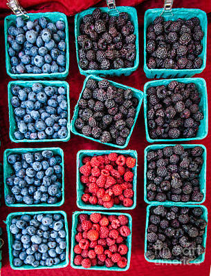 Photograph - Berries by George Garbeck