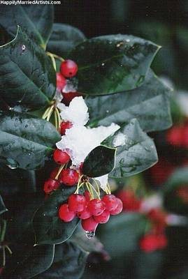Berries In The Snow Art Print