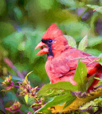 Photograph - Berry Beak  by Kerri Farley