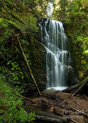 Berry Creek Falls In Big Basin Art Print by Matt Tilghman