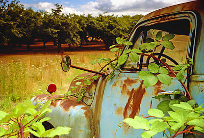 Berry Old Truck 2 Art Print by Jean Noren
