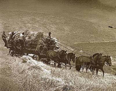 Photograph - Berta Ranch Hay Wagon Carmel Valley California  Circa 1940 by California Views Mr Pat Hathaway Archives