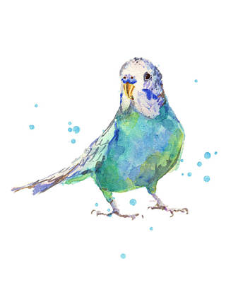 Parakeet Painting - Bertie Wonderblue The Budgie by Alison Fennell