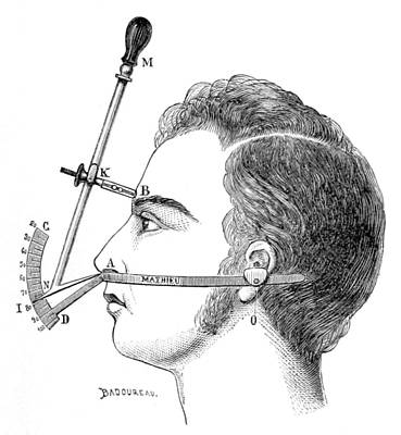 Bertillons Anthropometry, 1883 Print by British Library