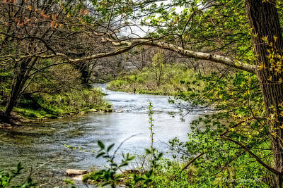 Photograph - Beside The Stream by Darlene Bell