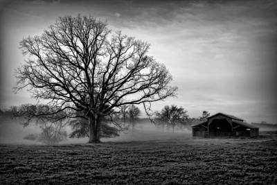 Photograph - Best Friends Old Barn And The Oak Tree by Reid Callaway