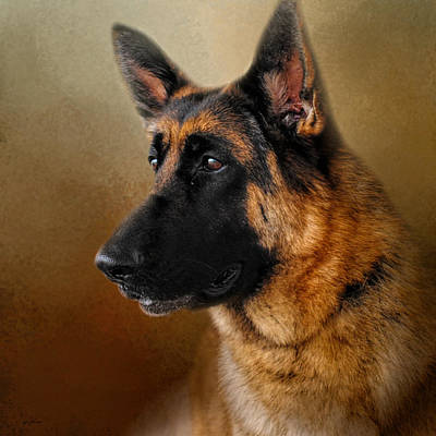 Best In Show - German Shepherd Art Print