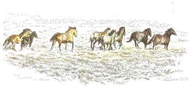 Best Of The West Wild Mustangs In Nevada Original