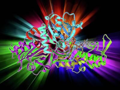 Beta-actin Molecule Art Print by Laguna Design