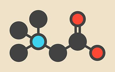 Beta-alanine Molecule Print by Molekuul