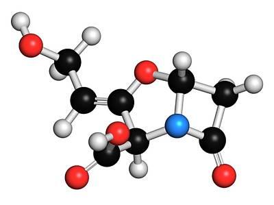 Chemical Photograph - Beta-lactamase Blocker Drug by Molekuul