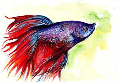 Betta Fish Painting - Beta Splendens Watercolor Fish by Tiberiu Soos