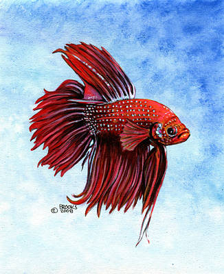 Betta-big Red Art Print