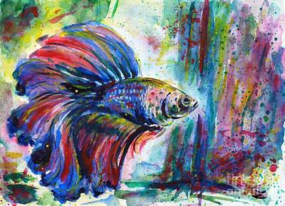 Betta Fish Painting - Betta by Zaira Dzhaubaeva