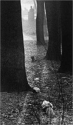Photograph - Better Tomorrow _ Tombstones In Forest by Mirza Ajanovic