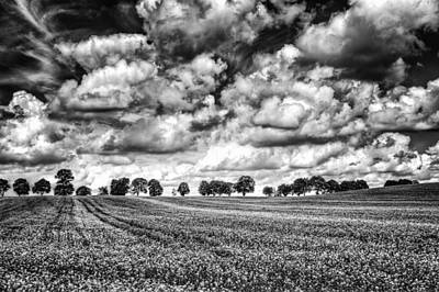 Photograph - Between The Clouds by Levente Tavaszi