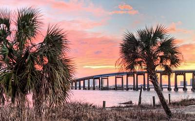 Navarre Beach Photograph - Between The Palms by JC Findley