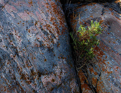 Photograph - Between The Rocks by Patrick Boening