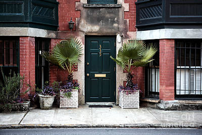 Photograph - Between Two Ferns by John Rizzuto